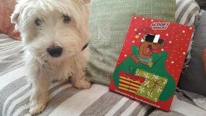 Barney + his advent calendar
