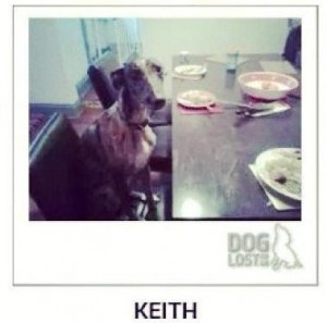Keith Lurcher lost-stolen