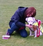 well doen butch you are a star- winner of best rescue- male dog