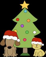 cat and dog and xmas tree