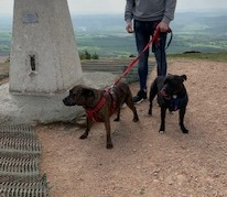 oscar and saffy on the wrekin