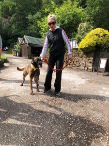 Roxie CAW dog sponsored with Jenny