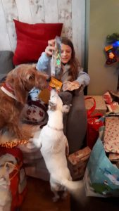 Fizz and Slinky presents