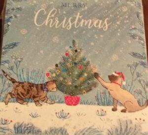 pawfect christmas card
