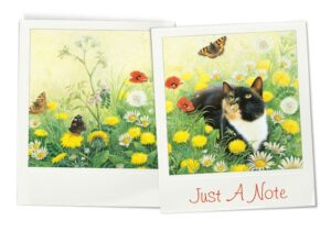 Cheadle notelets cats photos 1