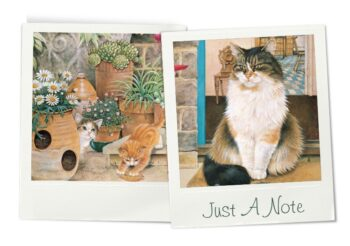 Cheadle notelets cats photos 3