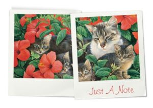 Cheadle notelets cats photos 4