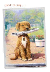 Cheadle notelets dog photo 1