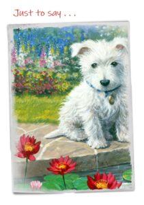 Cheadle notelets dog photo 3