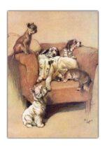 Cheadle Cecil Aldin dogs front