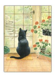 Cheadle black cat front