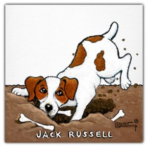 Jack Russell front